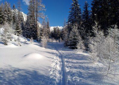 Technika výstupu skialpinistu